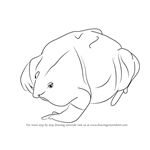 How to Draw a Purple Frog