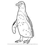How to Draw Penguin Standing