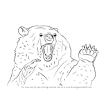 How to Draw an Angry Grizzly Bear
