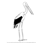 How to Draw a Black-Necked Stork