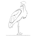 How to Draw a Crowned Crane