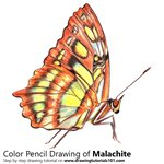 How to Draw a Malachite
