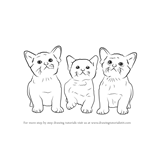 How to Draw Three Kittens