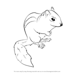 How to Draw an Eastern Chipmunk
