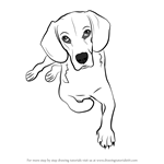 How to Draw a Sitting Dog