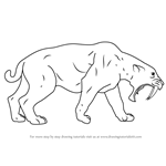 How to Draw a Saber-toothed cat