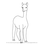 How to Draw a Alpaca