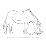 How to Draw a Horse Eating Grass
