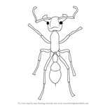 How to Draw a Bullet Ant