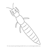 How to Draw a Thrips