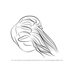 How to Draw a Lion's Mane Jellyfish