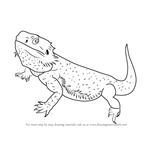 How to Draw a Bearded Dragon