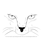 How to Draw Scary Cat Eyes
