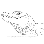 How to Draw a Chinese Alligator