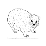 How to Draw a Dassie