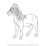 How to Draw an Quagga