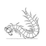 How to Draw a Scolopendra