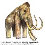 How to Draw a Woolly mammoth