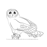 How to Draw a Short-eared owl