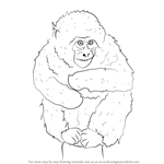 How to Draw a Japanese Macaque