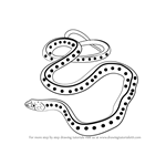 How to Draw a Common Garter Snake