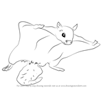 How to Draw a Northern Flying Squirrel