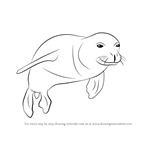 How to Draw a Hawaiian Monk Seal