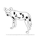 How to Draw a African Wild Dog