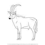 How to Draw an Antelope