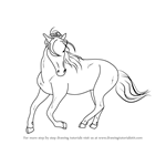 How to Draw a Barb horse