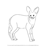 How to Draw a Bat-Eared Fox