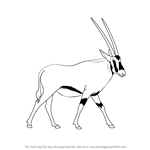 How to Draw a Beisa Oryx