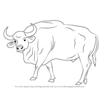 How to Draw a Gaur
