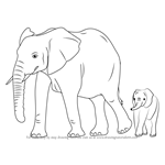 How to Draw an Elephant Family