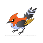 How to Draw Fletchinder from Pokemon