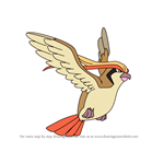 How to Draw Pidgeot from Pokemon