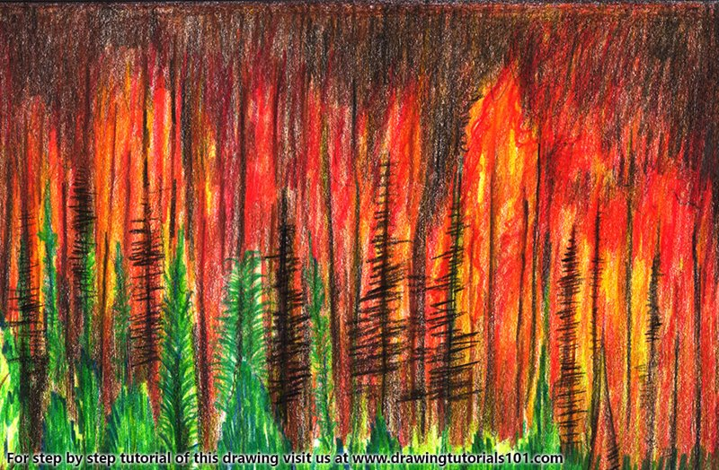 Forest Fire Color Pencil Drawing
