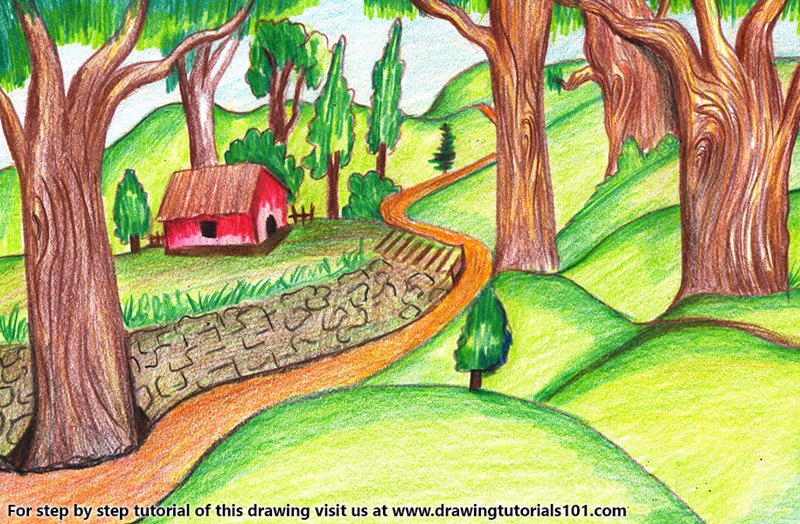 Forest Scene Color Pencil Drawing