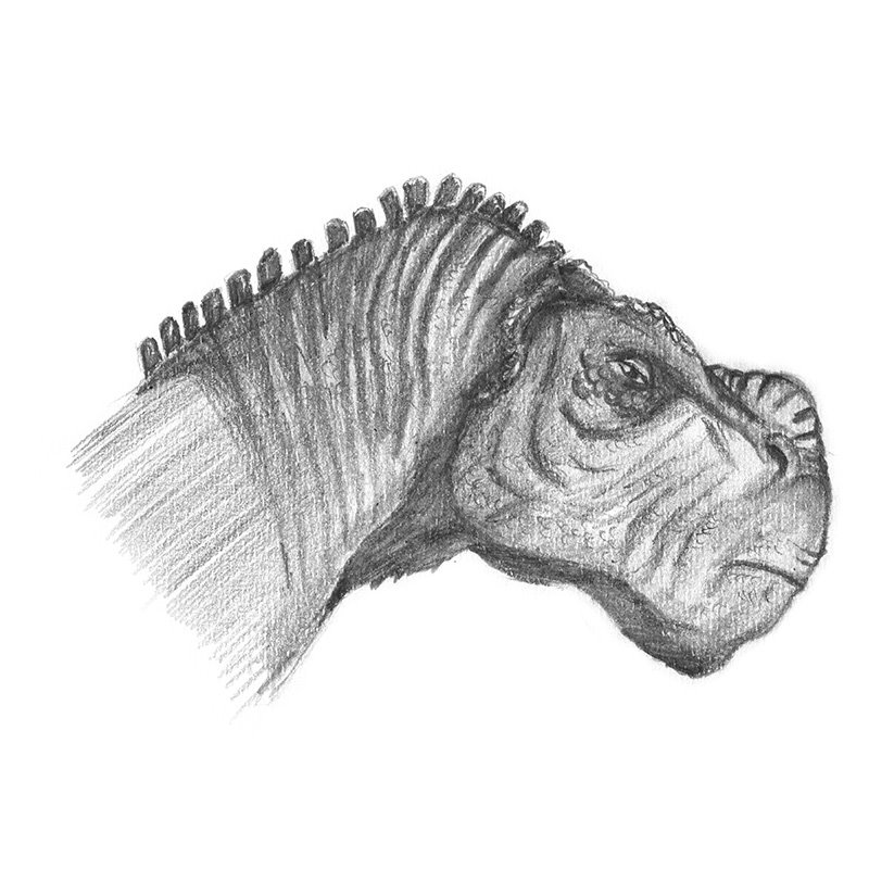 Pencil Sketch of Kron from Disney Dinosaur - Pencil Drawing