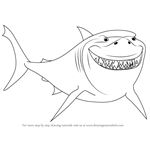 How to Draw Bruce from Finding Nemo