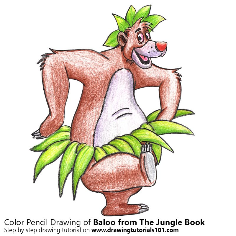 Baloo from The Jungle Book Color Pencil Drawing