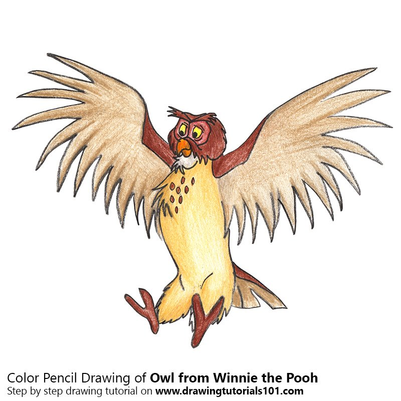Owl From Winnie The Pooh Colored Pencils Drawing Owl From Winnie The Pooh With Color Pencils Drawingtutorials101 Com