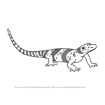 How to Draw Albert Albanerpeton from Dinosaur Train