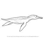 How to Draw Mrs. Pliosaurus from Dinosaur Train