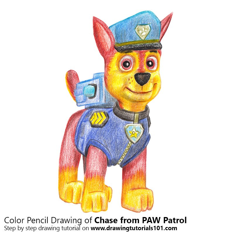 Chase from PAW Patrol Color Pencil Drawing