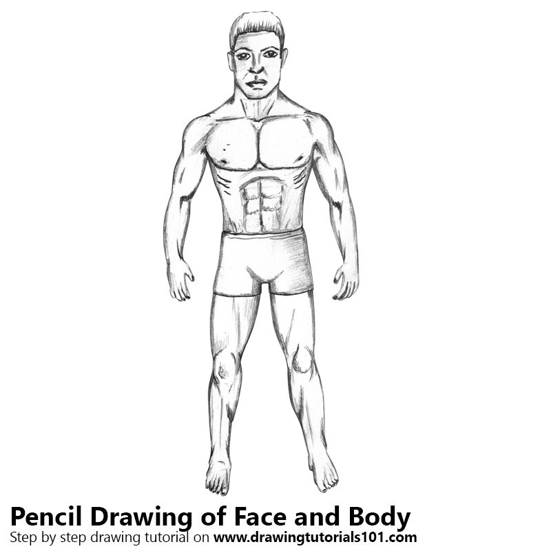 Pencil Sketch of Face and Body - Pencil Drawing