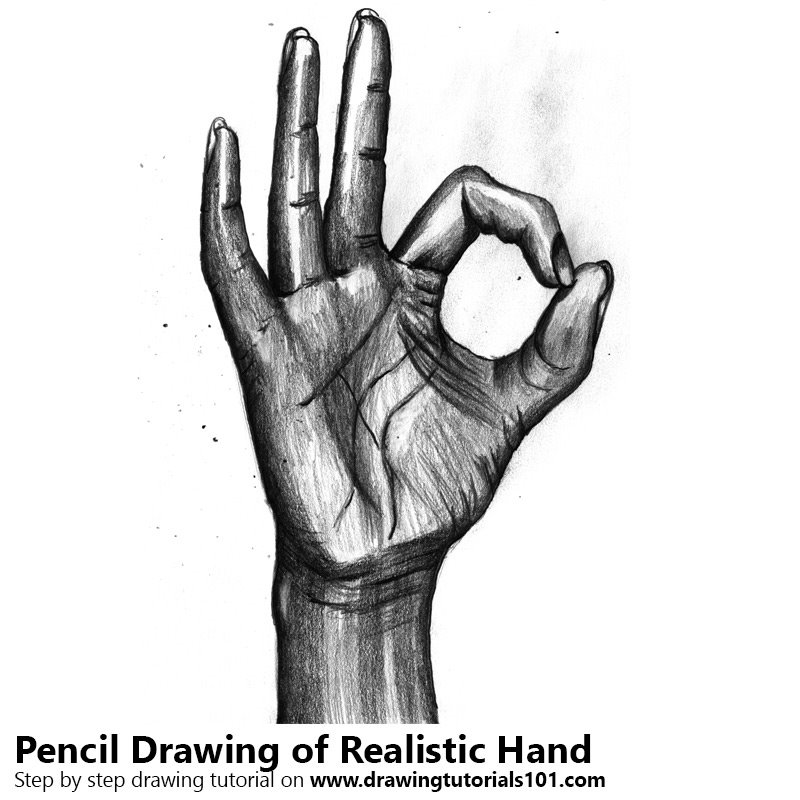 Pencil Sketch of Realistic Hand - Pencil Drawing