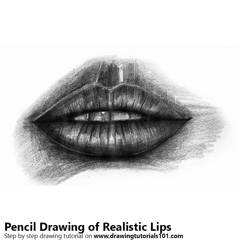 Pencil Sketch of Realistic Lips - Pencil Drawing