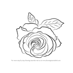 How to Draw a Cherry Red Rose