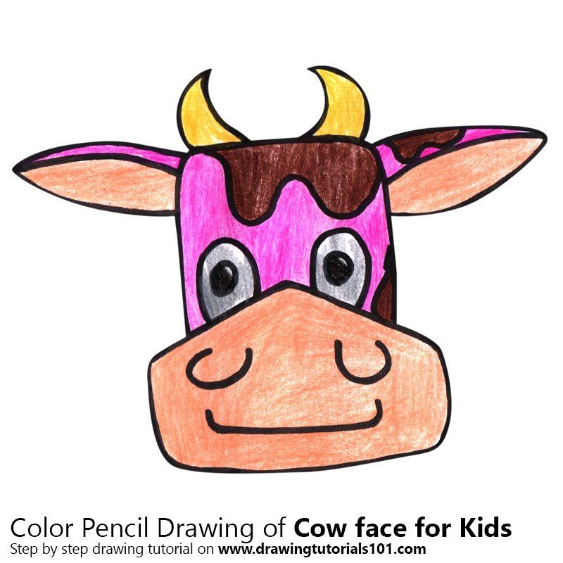 Cow Face for Kids Color Pencil Drawing